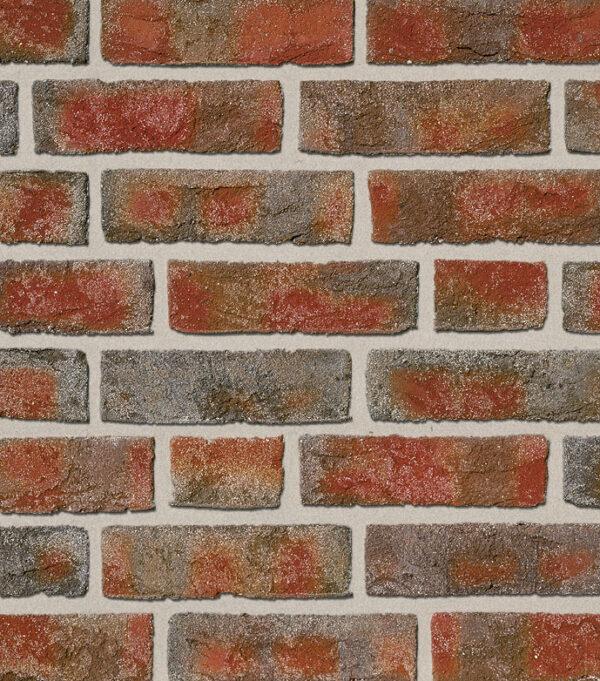 Artteracotta-fasadna-opeka-FORMBACK buntgeflammt-1